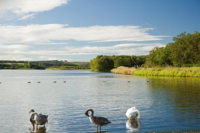 Warning signs to stay away from the water are still in place at Lochore Meadows Country Park.
