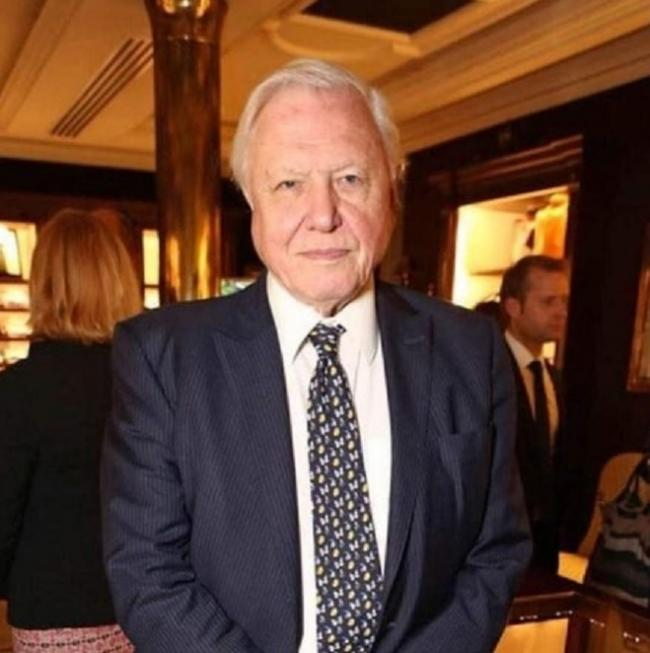 Blue Plant celebrity Sir David Attenborough is backing the Blue Brazil.