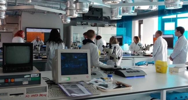 Students from Fife College working in a lab at Abertay University.